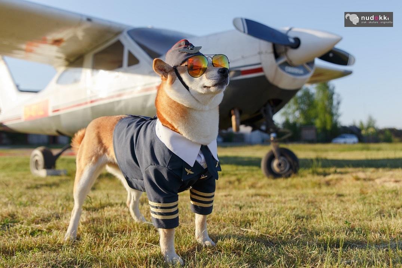 Ray-Ban aviator, viete čo znamená G15?